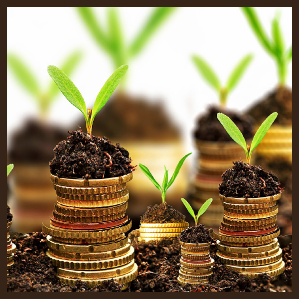 Look at the Business Financing the Way Moneylenders do otherwise, it will cost you…